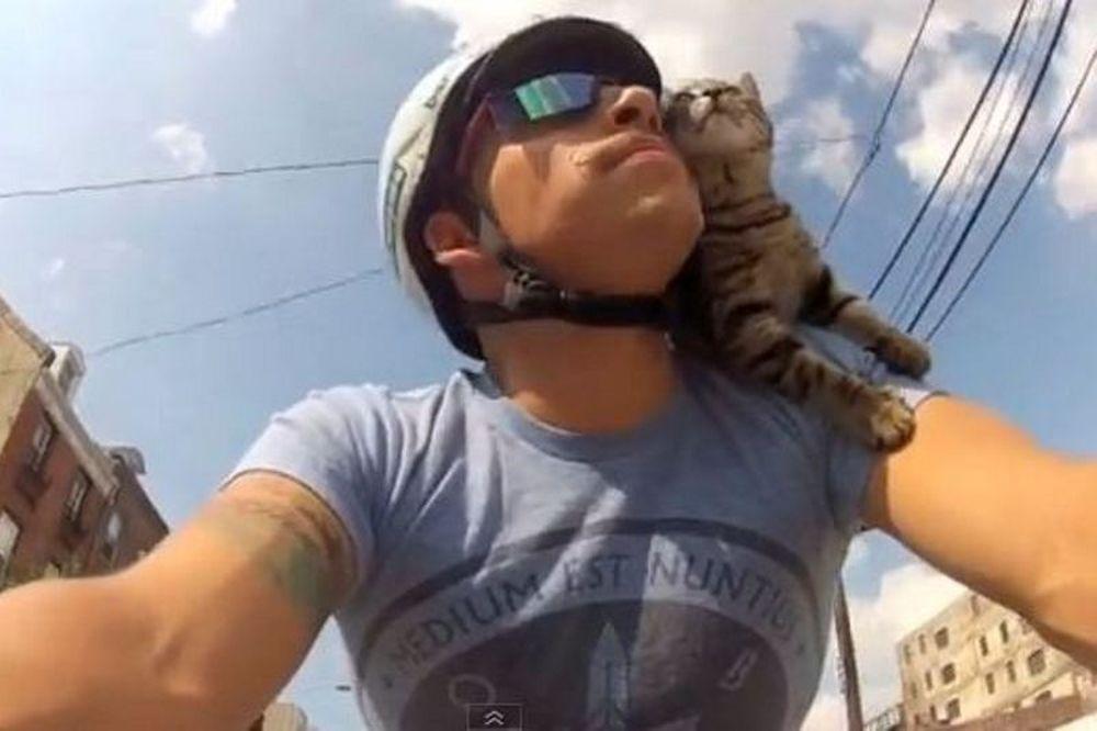 Δείτε τη γάτα που λατρεύει την ποδηλασία... (video)
