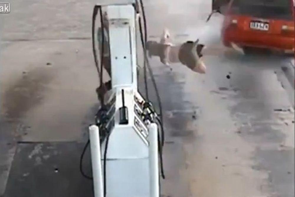 Απίστευτο! Ξήλωσε μάνικα βενζίνης και έφυγε! (video)