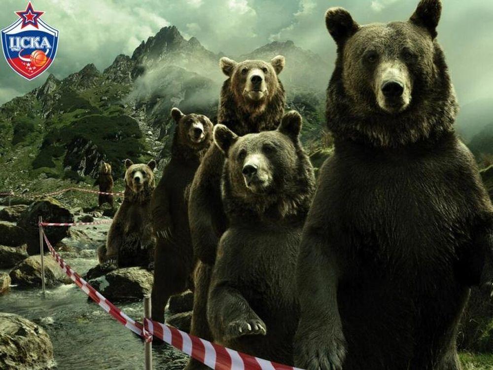 ΤΣΣΚΑ: Ο Παναθηναϊκός και οι... αρκούδες (photo)