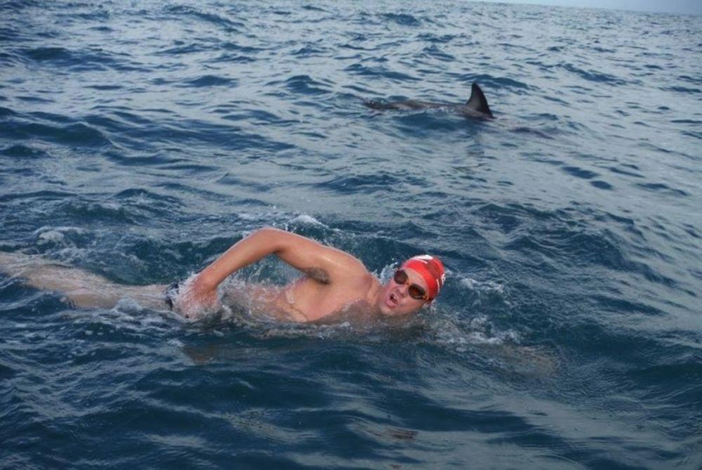 Κολυμβητής σώθηκε από καρχαρία μέσω δελφινιών (video)