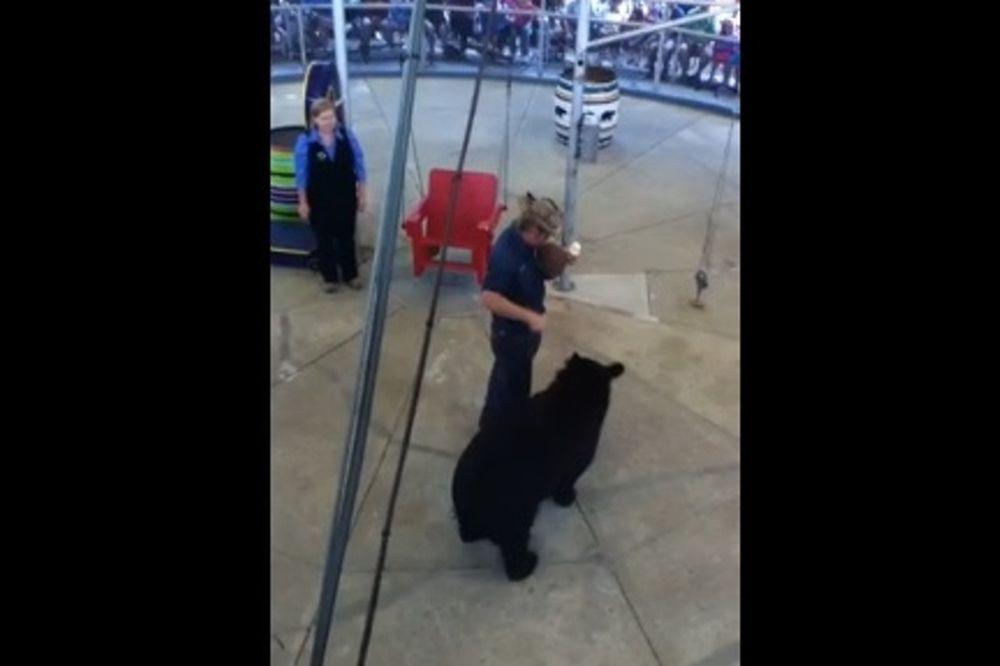 Αρκούδα παίζει μπάσκετ και... καρφώνει! (video)