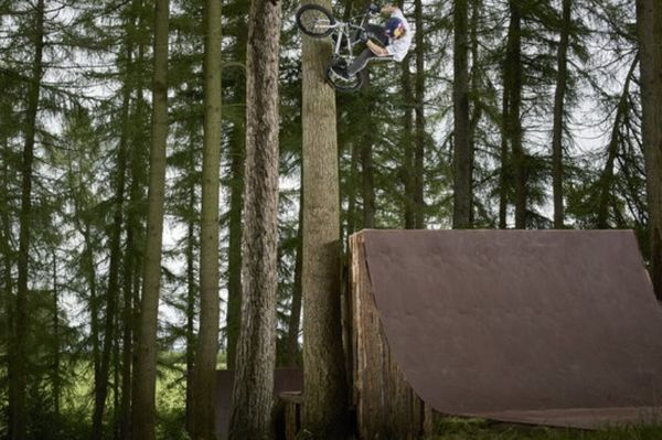 BMX: «Σκαρφαλώνουν» στα δέντρα με τα ποδήλατα! (photos)
