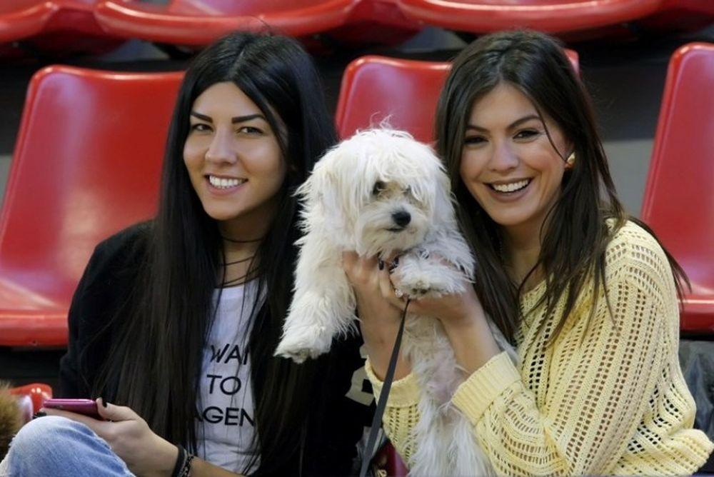 Basket League: Ωραίο θέαμα και στις κερκίδες (photos)