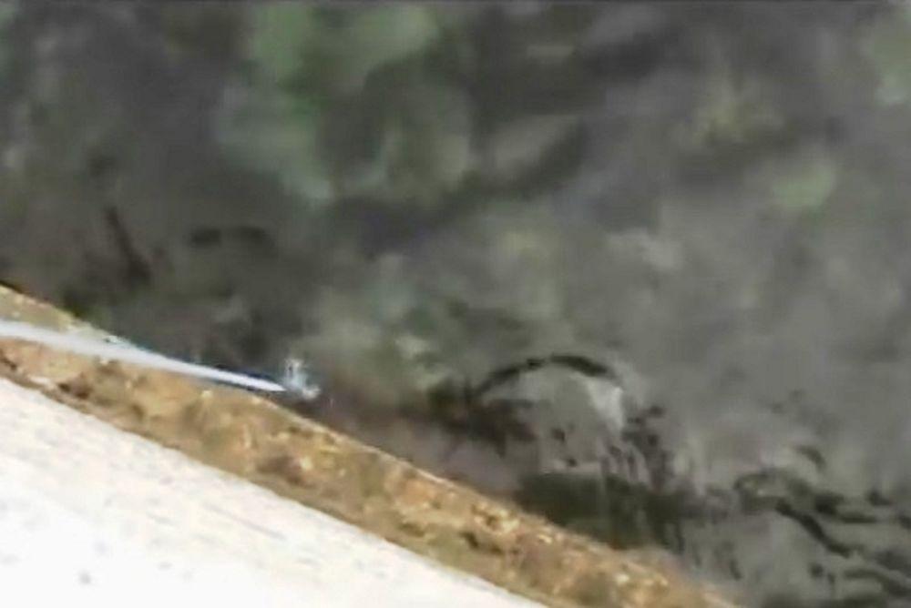 Απίστευτο! Έριξε τον σταυρό και έπιασε… χταπόδι! (video)