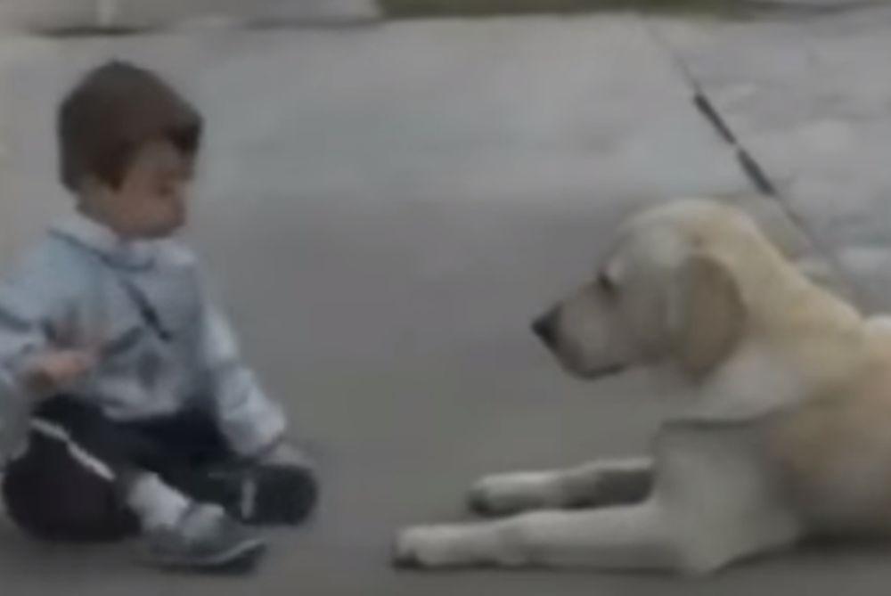 ΣΥΓΚΛΟΝΙΣΤΙΚΟ: Η αντίδραση σκύλου όταν συνάντησε παιδάκι με σύνδρομο down (video)