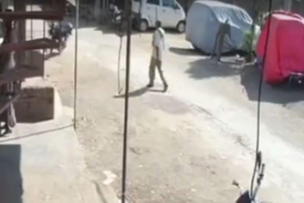 Απίστευτη επίθεση από... μαϊμού σε πολίτη (video)