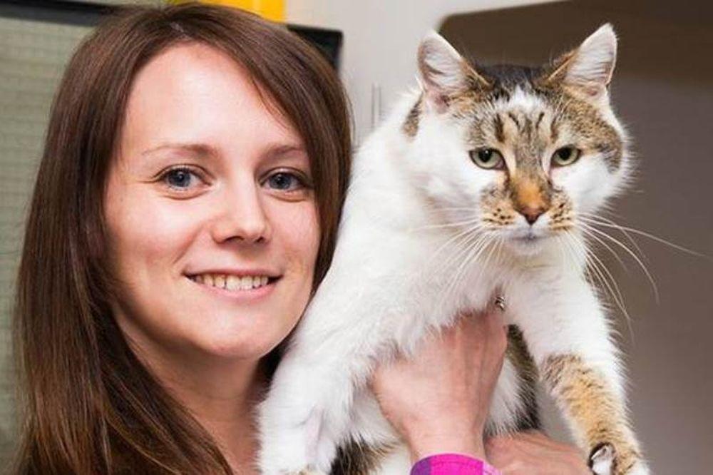 Ουαλία: Γάτα ξαναβρέθηκε με τους ιδιοκτήτες της μετά από έξι χρόνια!
