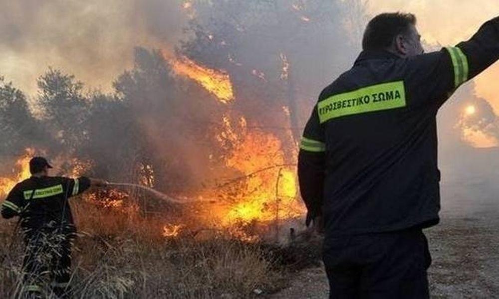 Καίγεται η Θάσος: Σε κατάσταση έκτακτης ανάγκης το νησί - Κάηκαν σπίτια, εκκενώθηκαν χωριά