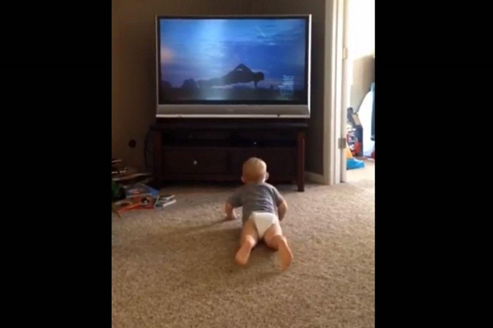 ΕΠΙΚΟ! Μπέμπης βλέπει Ρόκι Μπαλμπόα και κάνει κάμψεις! (video)