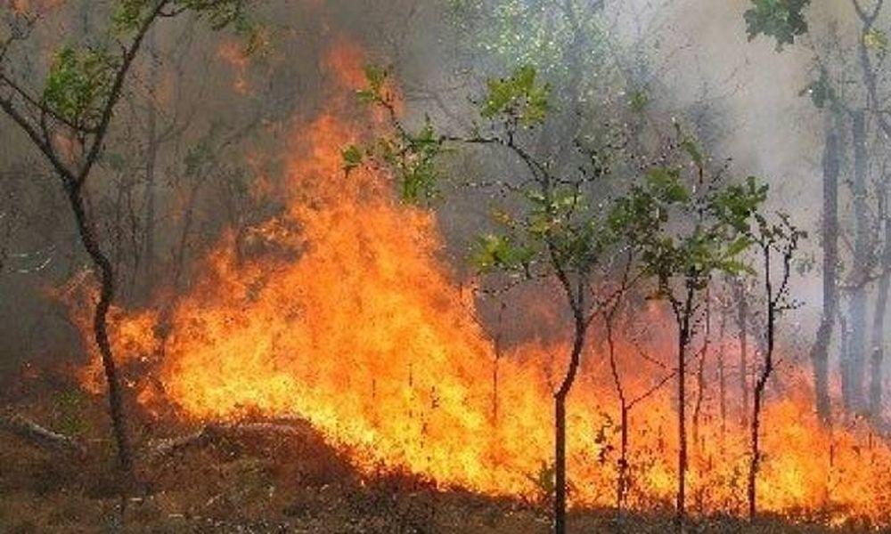 Φωτιά ξέσπασε σε Ρέθυμνο και Μυτιλήνη