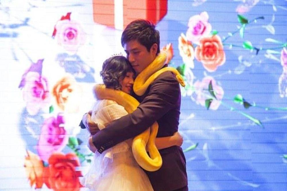 Ο πιο περίεργος γάμος ever: Αντί για βέρες αντάλλαξαν... πύθωνες! (video)