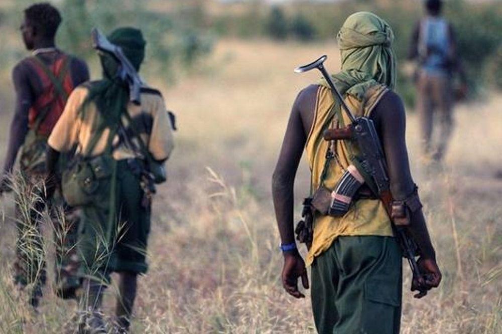 Νίγηρας: «Σφαγή» με 123 τρομοκράτες νεκρούς ύστερα από επιχείρηση κατά της Μπόκο Χαράμ