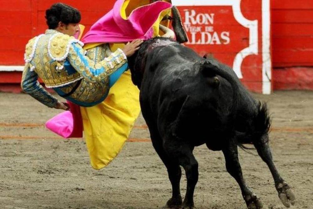 Ισπανία: Κανονικά οι ταυρομαχίες στην Καταλονία