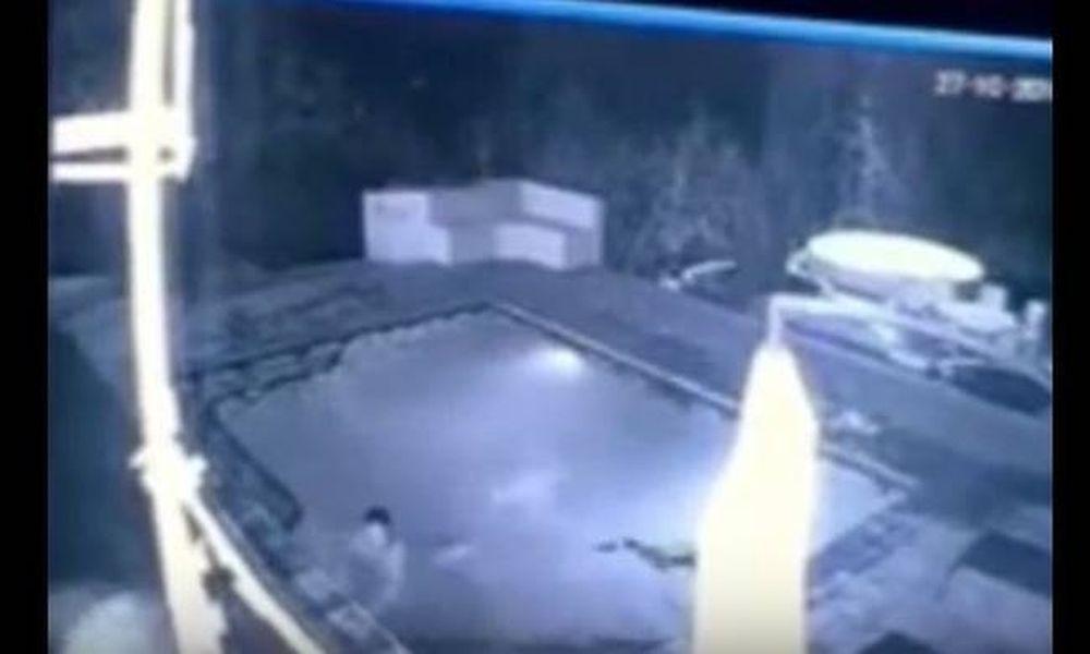 Τρόμος: Κροκόδειλος επιτέθηκε σε ζευγάρι μέσα σε πισίνα ξενοδοχείου! (video)