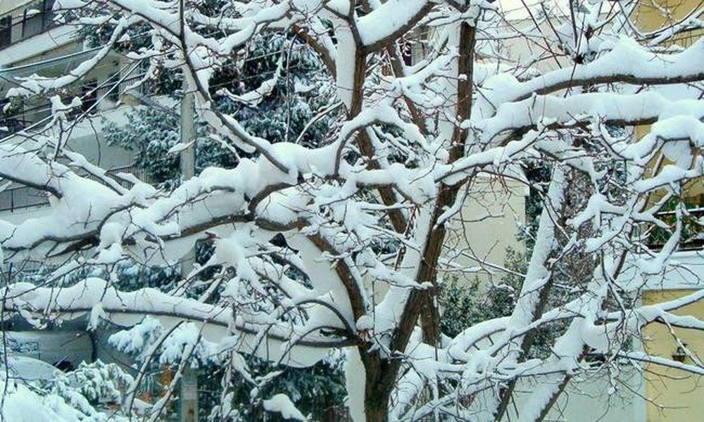 Καιρός: Πού θα χιονίσει την Τρίτη (29/11)