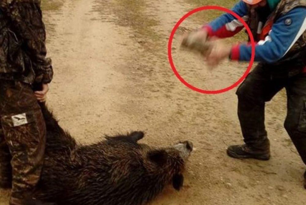 Βασανισμός ζώου από ασυνείδητους κυνηγούς (video)