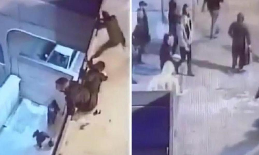 Εικόνες ντροπής! Έτσι μπήκαν κροτίδες και φωτοβολίδες στο ντέρμπι της Κύπρου! (photos+video)