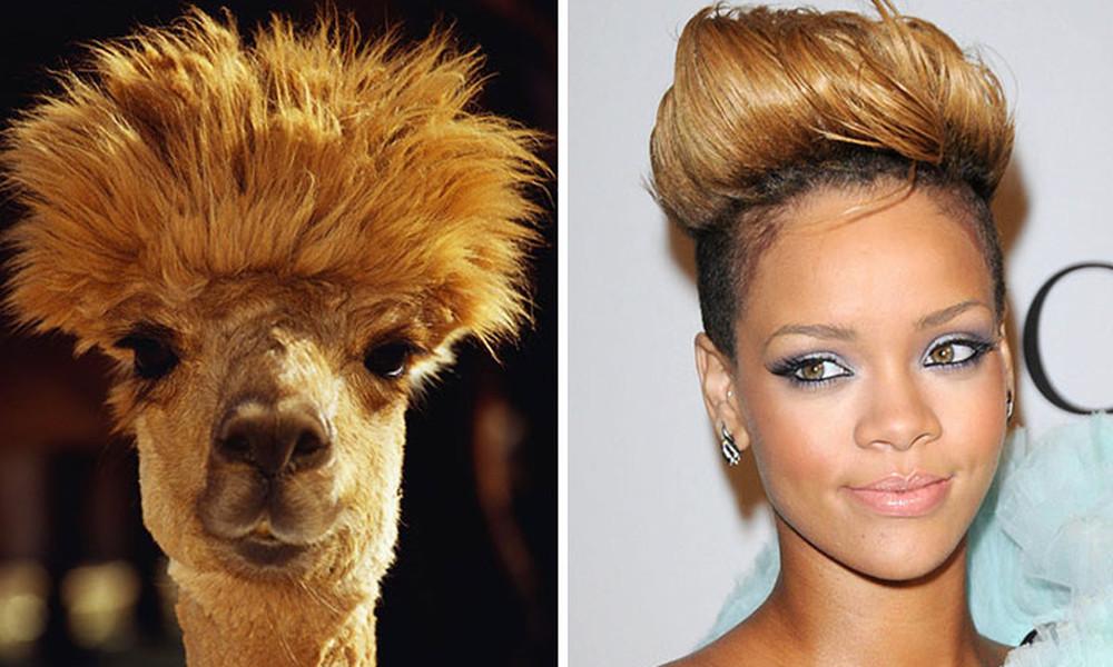 Απίστευτο κι όμως αληθινό! 40 ζώα που μοιάζουν εκπληκτικά με διάσημους ανθρώπους (video)