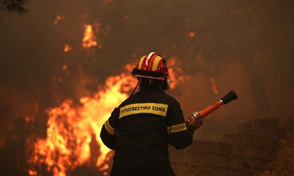 Φωτιά: Συνεργασία Δήμου Μαραθώνα και ΟΠΑΠ για τη στήριξη των πληγέντων από τις πυρκαγιές