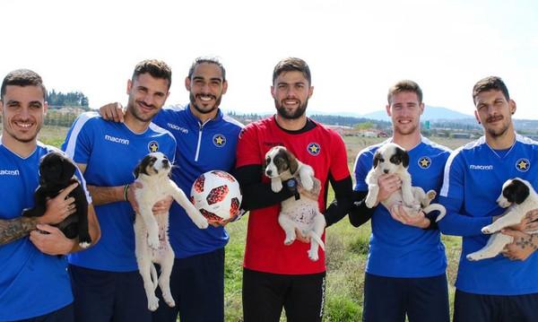 Αστέρας Τρίπολης: Οι ποδοσφαιριστές φροντίζουν αδέσποτα κουταβάκια (photos)
