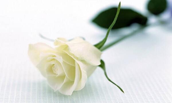 Πλήθος κόσμου στο υστατο «αντίο» της συζύγου του Δημήτρη Ανδρεόπουλου